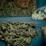 Green Tea - Uncovering the Health Benefits of Green Tea