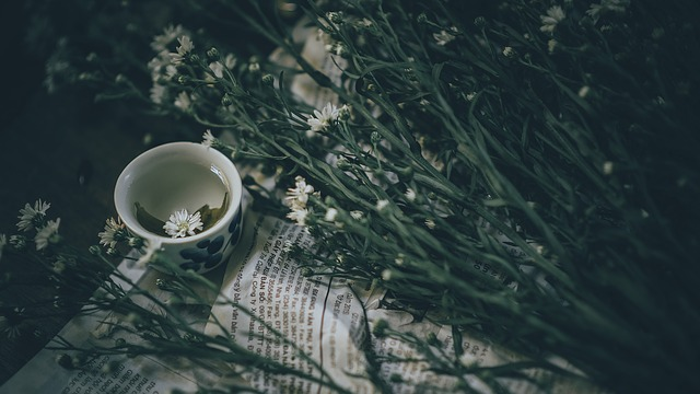 Benefits We Can Get From Green Tea