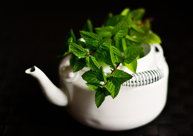 Boost Your Metabolism and Burn Fat With Green Tea